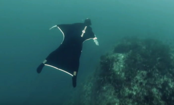 revolutionary wingsuit