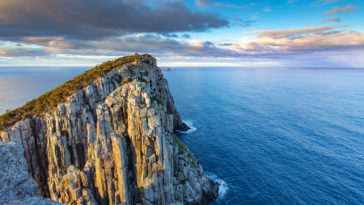 Tasmanian lost world